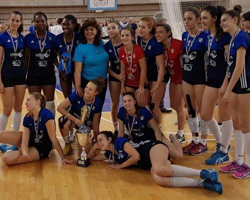 Sport Mental Coach Volley